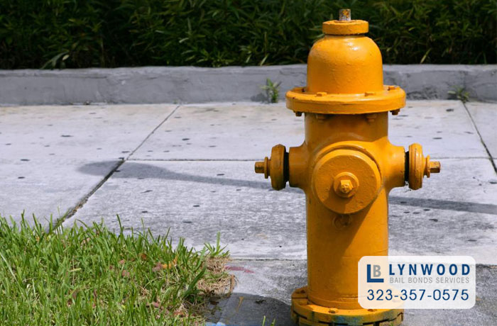 lynwood bail bonds parking in front of a fire hydrant