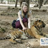 lynwood bail bonds trespassing at a zoo