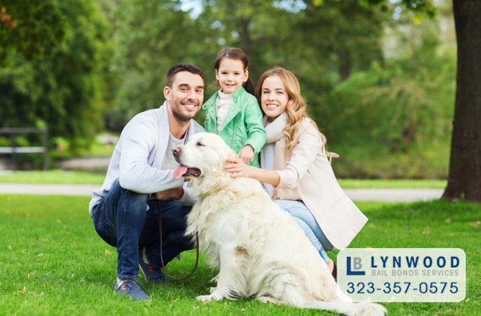pet laws in california