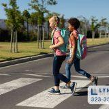 School zone traffic laws